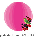 spring, ume, flower 37187033