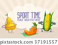 vector, vegetable, fruit 37191557