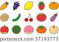 蔬菜水果 37193773