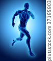 3d illustration male running pose skeleton joint. 37195903