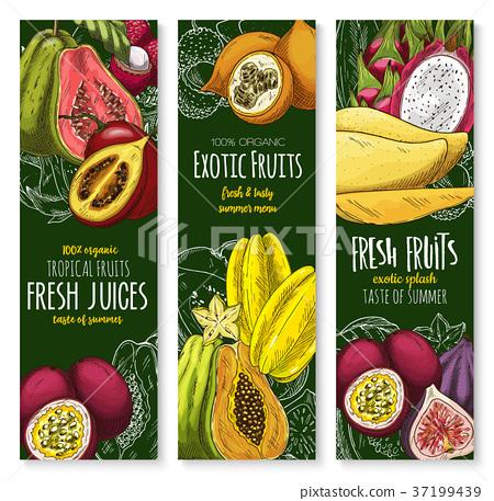 Vector Banners Of Tropical Exotic Fruit Juice Stock Illustration 37199439 Pixta