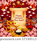 Chinese New Year wish vector greeting card 37199513