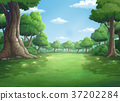 background for jungle and natural at daytime. 37202284