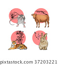 RF illustration - character of chinese zodiac, the Zodiac sign004 37203221