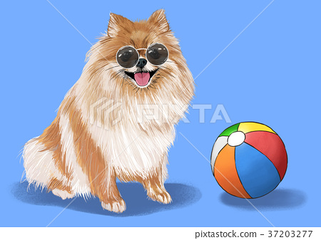 illustration of Pet - cute bulldog, Chihuahua, poodle, Maltese and etc.007 37203277