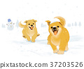Vector of puppy, a litter of puppies, 2018 002 37203526