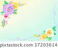 flower frame 005 37203614