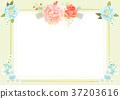 flower frame 004 37203616