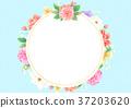 flower frame 002 37203620