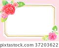 flower frame 001 37203622