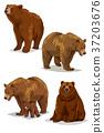 Animals 009 37203676