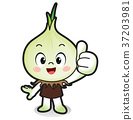 illustration Onions vegetable 37203981