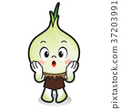 illustration Onions vegetable 37203991