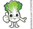 cartoon vegetables 013 37204076