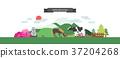 illustration, animal, background 37204268