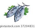 插图 鱼 食物 37204831