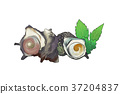 插图 食物 食品 37204837