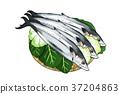 season food 016 37204863