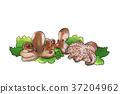 season food 022 37204962