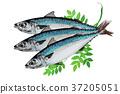 season food 032 37205051