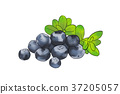 season food 049 37205057