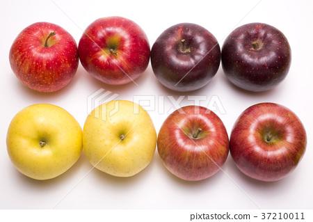 蘋果 水果 食品 37210011