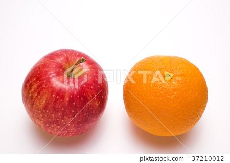 蘋果 柑橘 水果 37210012