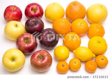 蘋果 柑桔類 柑橘類 37210015