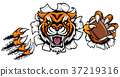 Tiger American Football Ball Breaking Background 37219316