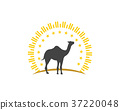 Camel Icon Logo Template design 37220048