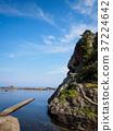 fishing port, luciola lateralis, heike 37224642