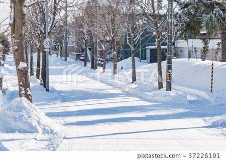 겨울 홋카이도의 주택가 / 북국의 생활 이미지 홋카이도 삿포로시 37226191