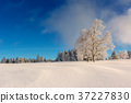 Wintertime - Black Forest Germany 37227830