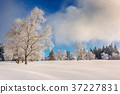 Wintertime - Black Forest Germany 37227831
