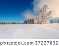 Wintertime - Black Forest Germany 37227832