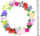 flower, flowers, lease 37232874