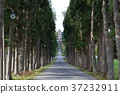 trappist monastery, convent, friary 37232911