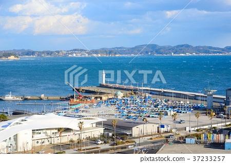 碼頭 小船塢 江之島 37233257