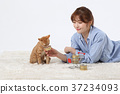 RF photo - woman single life with a companion pets  331 37234093