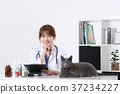 RF photo - Petconomy, a veterinarian and animals 249 37234227