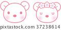 熊 臉部 臉 37238614