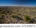 Guadalupe Mountain National Park 37240671