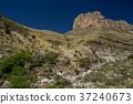 texas, mountain, america 37240673