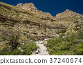 Guadalupe Mountain National Park 37240674