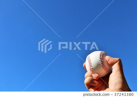야구 이미지 37241380