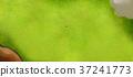 golf, green, bunker 37241773