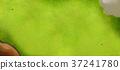 golf, green, bunker 37241780