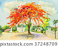watercolor, background, red 37248709