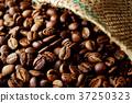 커피 콩 37250323