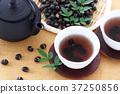 음료, 차, 콩 37250856